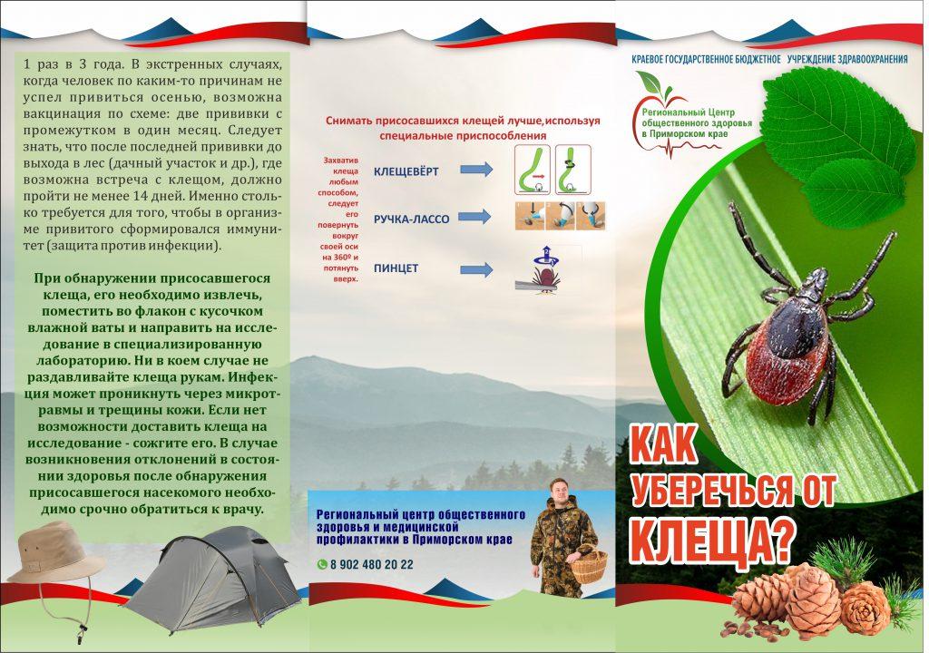 kak-uberechsya-ot-kleshha1
